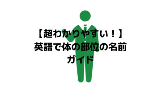 【超わかりやすい!】英語で体の部位の名前ガイド(写真付き)